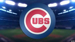The 2020 CubsPreview
